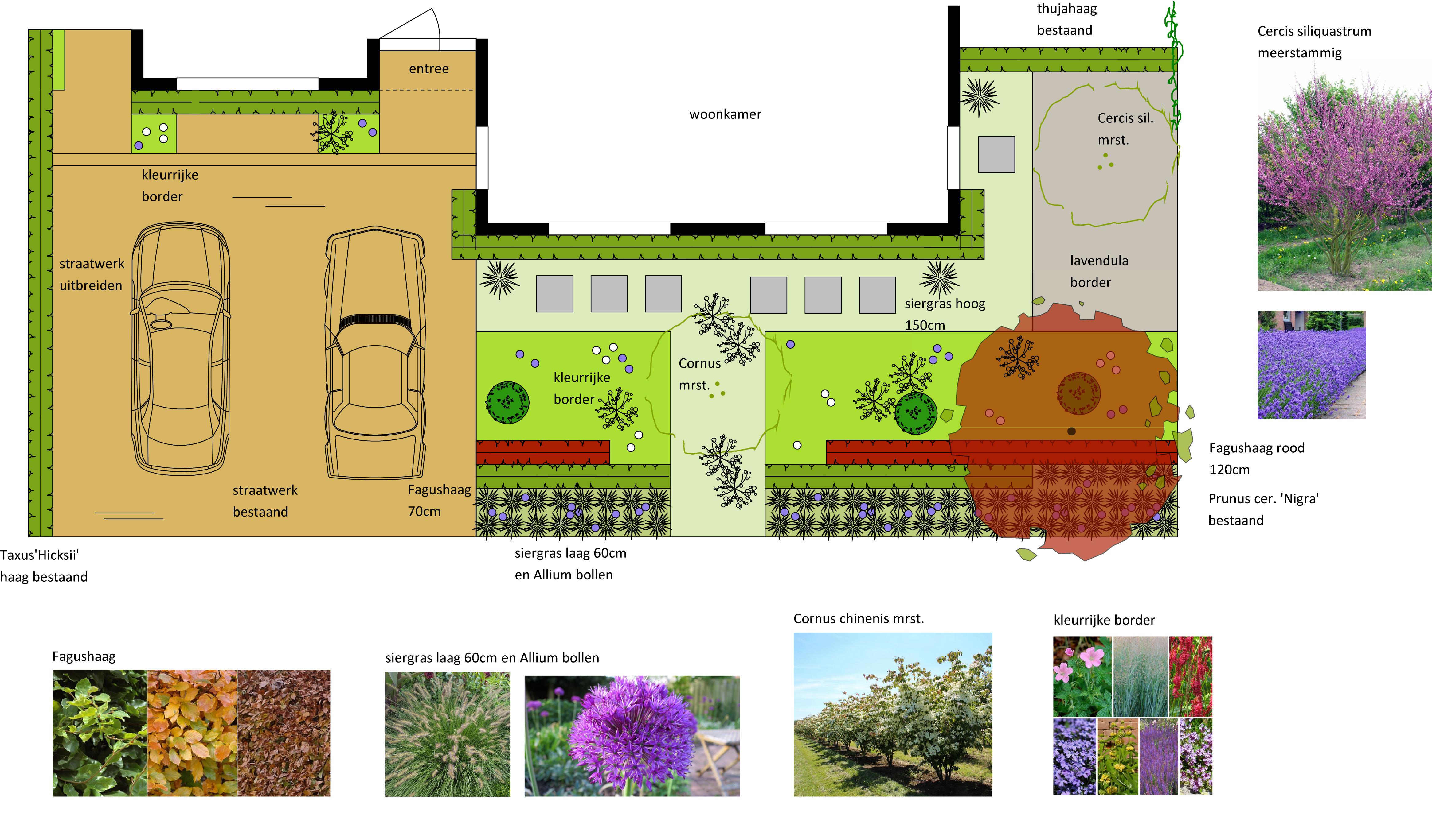 G:_ProjectenOOssenblok, Malden2018 Ossenblok, MaldentekeningenOssenblok, ontwerp voortuin2 18-11-30.hcd